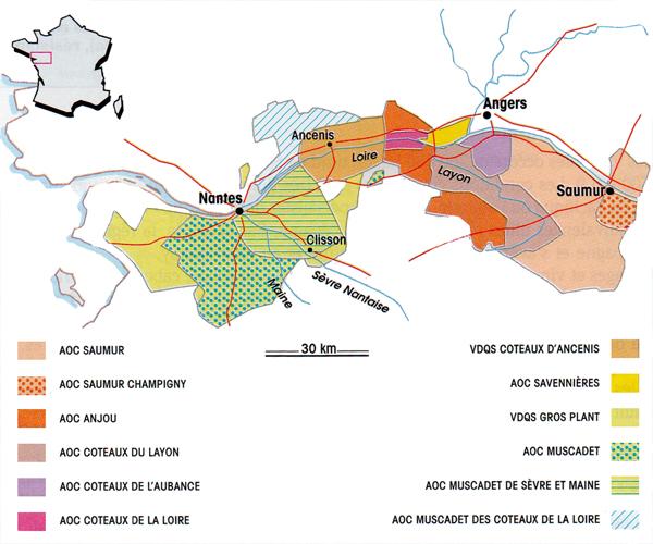 La carte géographique des vins de la Loire (ouest)